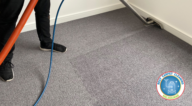 HOW TO CHOOSE THE BEST CARPET CLEANING MELBOURNE