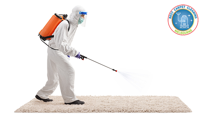 HOW TO KEEP YOUR CARPET COVID FREE AND DISINFECTED