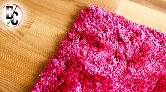 HARD FLOOR VS. CARPET: ALL YOU NEED TO KNOW